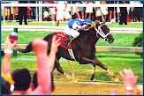 Smarty Jones in Preakness