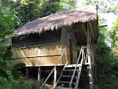Cabañas Tradicionales