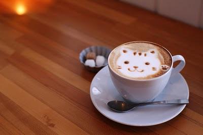 gato cafe: