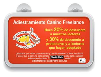 Adiestramiento Canino Freelance