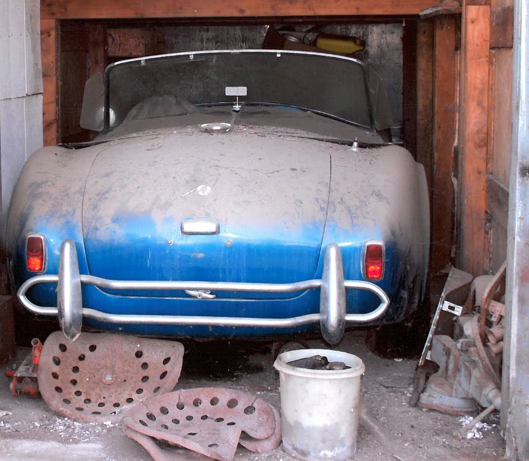Cobra Pedal Car http://themusclecarsviewre.blogspot.com/2011/01/barnfind-shelby-ac-cobra-and-one-owner.html