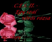 Egy szál vörös rózsa