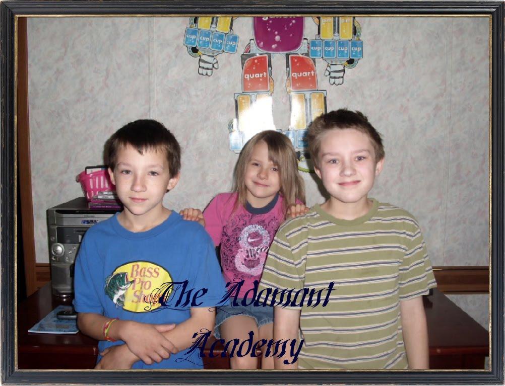 Our Crazy Homeschool Life