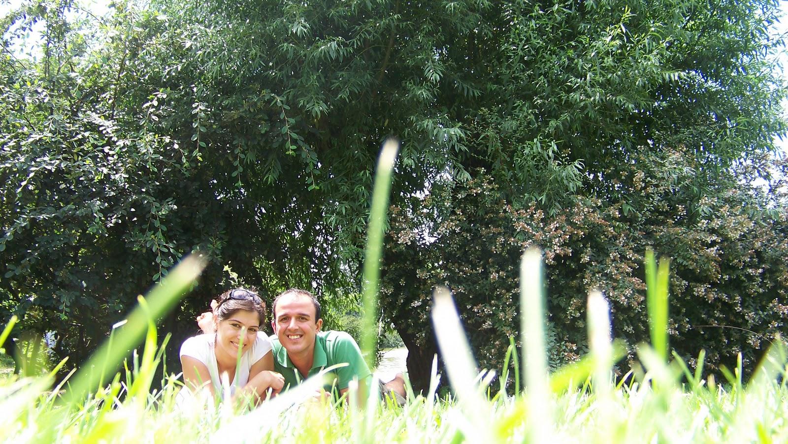 Çimenlerin neden yeşil olduğunu sorduk