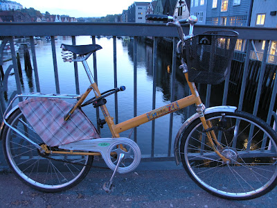 folding bike Trondheim with a skirt guard