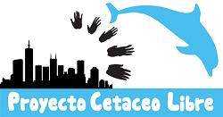Protección global para los delfines