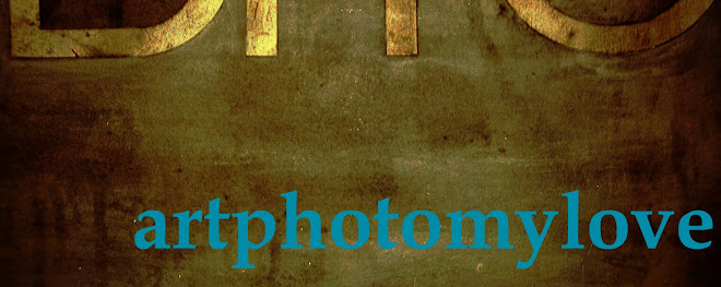 artphotomylove