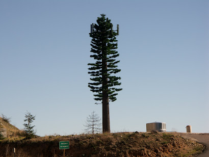 Around the Antenna Tree: The Politics of Infrastructural Visibility