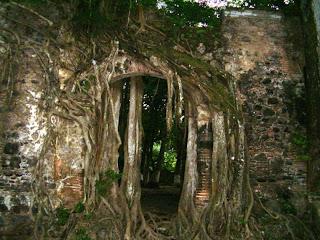 casa hernan cortes la antigua veracruz