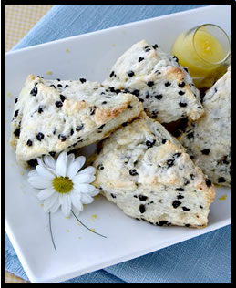 lemon currant scones with citrus curd