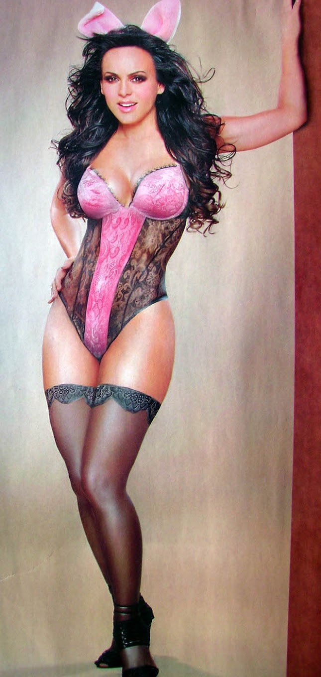 Maribel Guardia - Art
