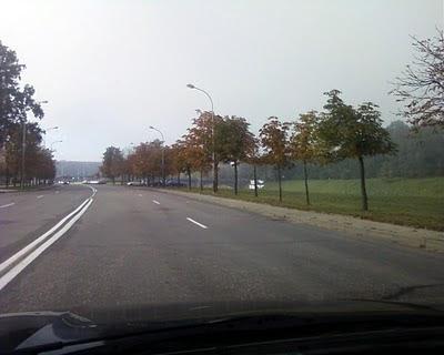 Rudens ryto rūkas Vilniuje. Goštauto gatvė