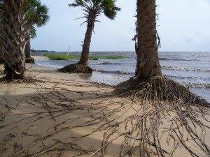 Pantai Paling Mengerikan di Dunia