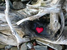 amor en lugares equivocados
