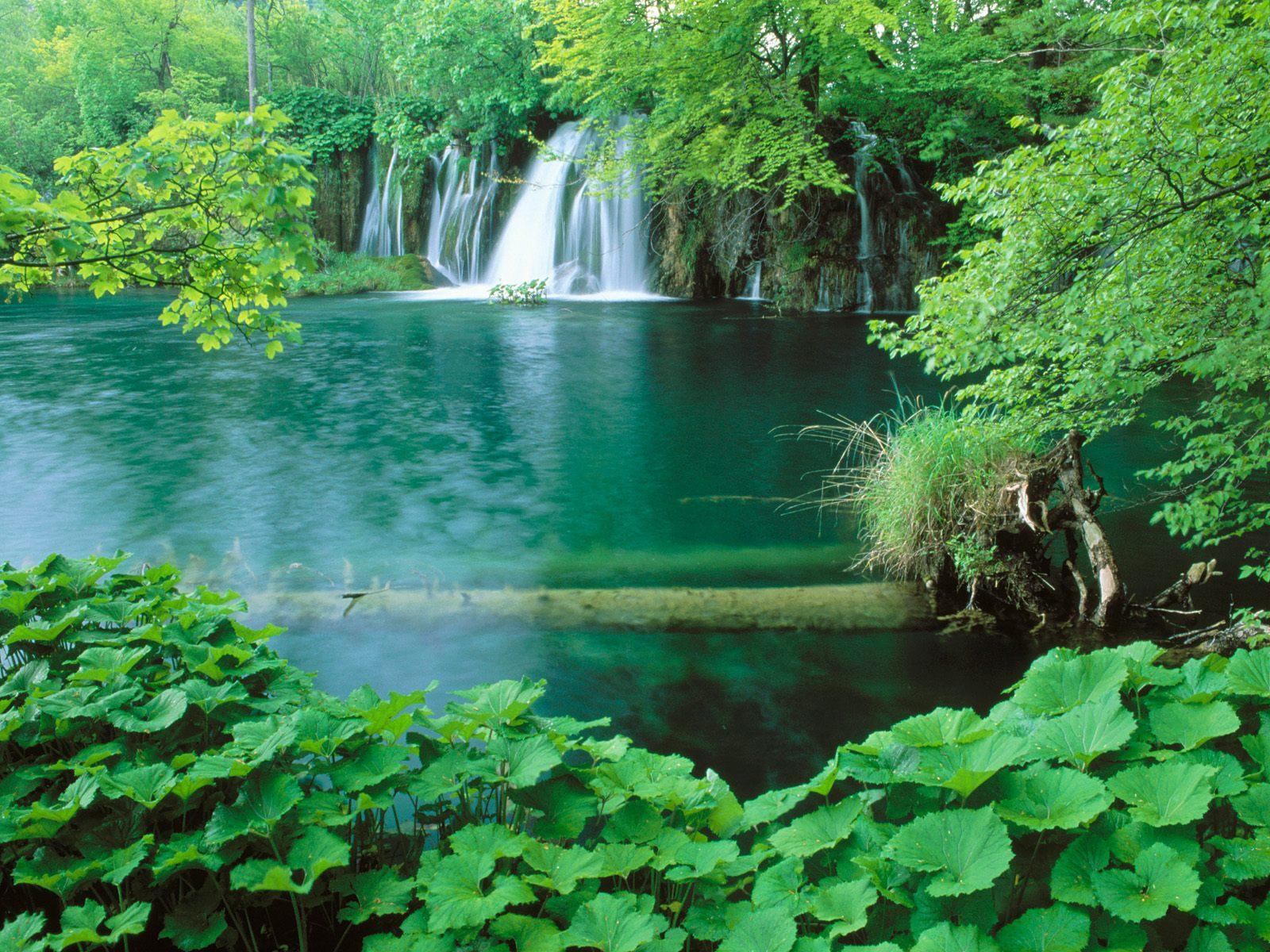 http://1.bp.blogspot.com/_ioD6UOQqcyA/Sw75S63la-I/AAAAAAAABeg/TRy452ndB0U/s1600/Plitvice+National+Park,+Croatia.jpg