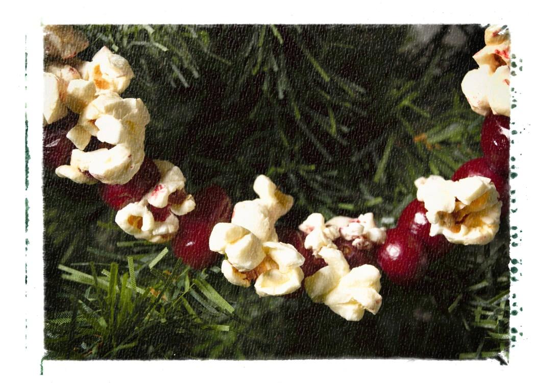 CleanEnergy Footprints u00bb Archive u00bb An Efficient Holiday Season: Decorating Edition