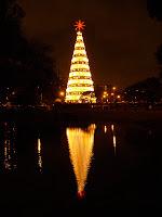 池に映るクリスマスツリー