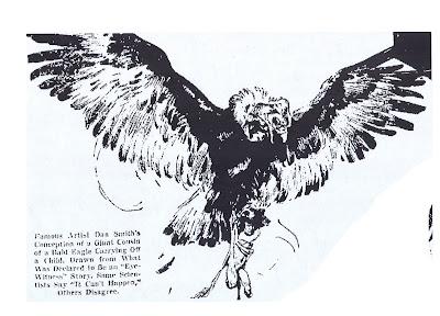 [thuderbird.jpg]