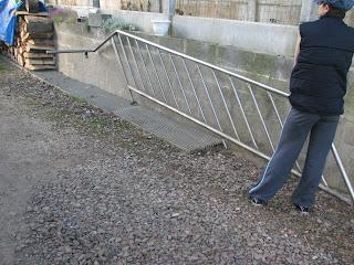Rampe escalier en inox for Descente d escalier interieur