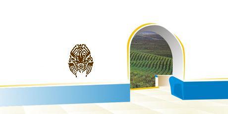 Festa da Vinha e do Vinho de Borba - 17/11/2007 Blasted Mechanism