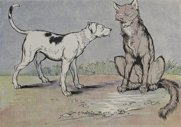 Fable  Dog Age