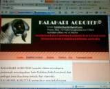 Kalahari Agrotek webpage