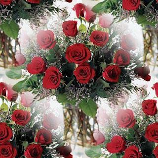 [Resim: Valentine+bkgnds+(10)-767432.jpg]