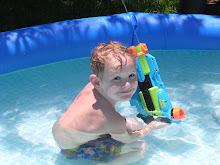 D in our pool 2008