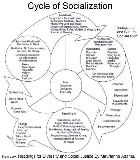 freshman humanities  the cycle of socialization