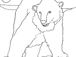 Artic Fox Coloring Pages To Print