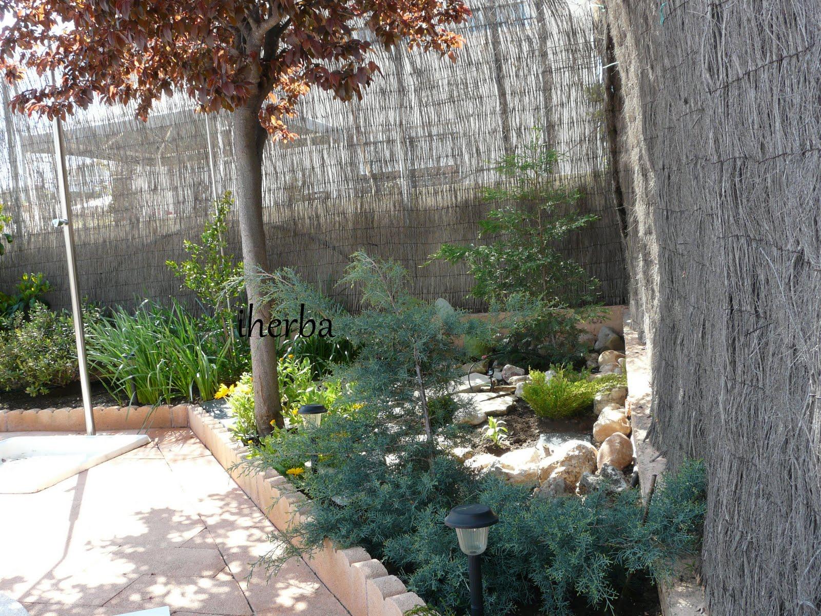 El mundo de las plantas de iherba semana de trabajo - Arriate jardin ...