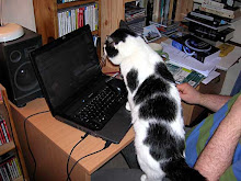 Boris surfing the net