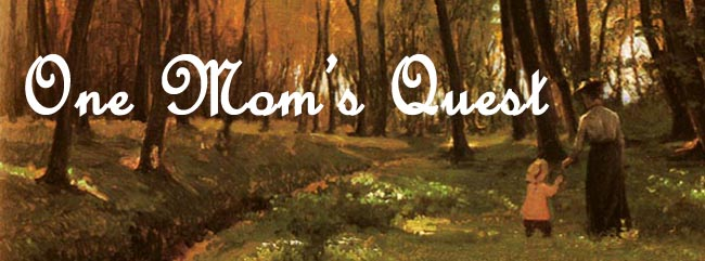 One Mom's Quest