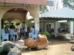 霹靂盆栽雅石协会观摩赛2008