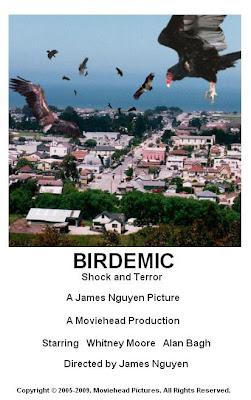 Birdemic, shock and terror