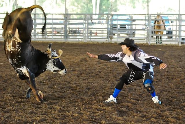 zSWTPhoto 141 PCJBR Rodeo