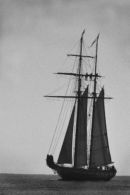 Tall+Ship Photo #7 Old tall ship