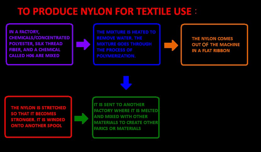 The Nylon In