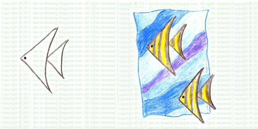 drawn angel fish