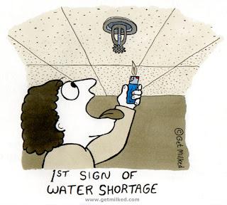 World water shortage essay