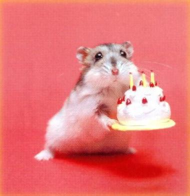 *-Feliz Cumpleaños a MI V-* Cumplea%C3%B1os78