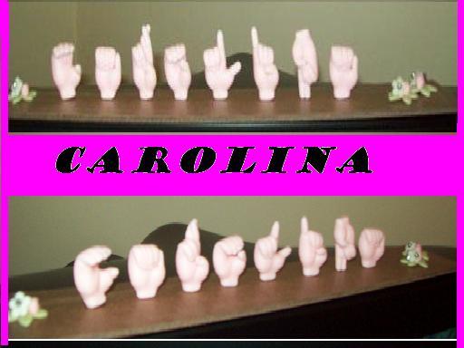 Nome para mesa : Carolina