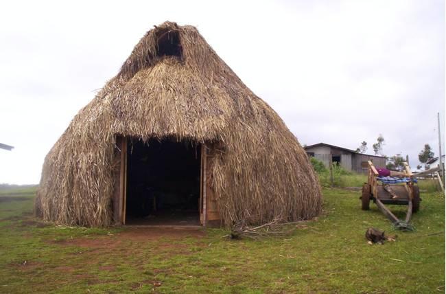 la ruka mapuche  (casa)