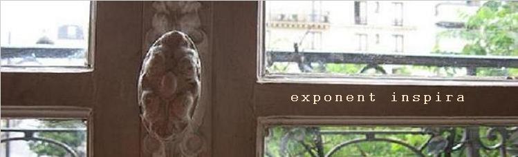 exponent inspira