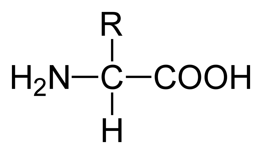steroid chemical formula