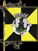 A Bandeira de todos os que lutam pelo concelho