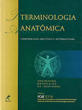TERMINOLOGIA ATUALIZADA