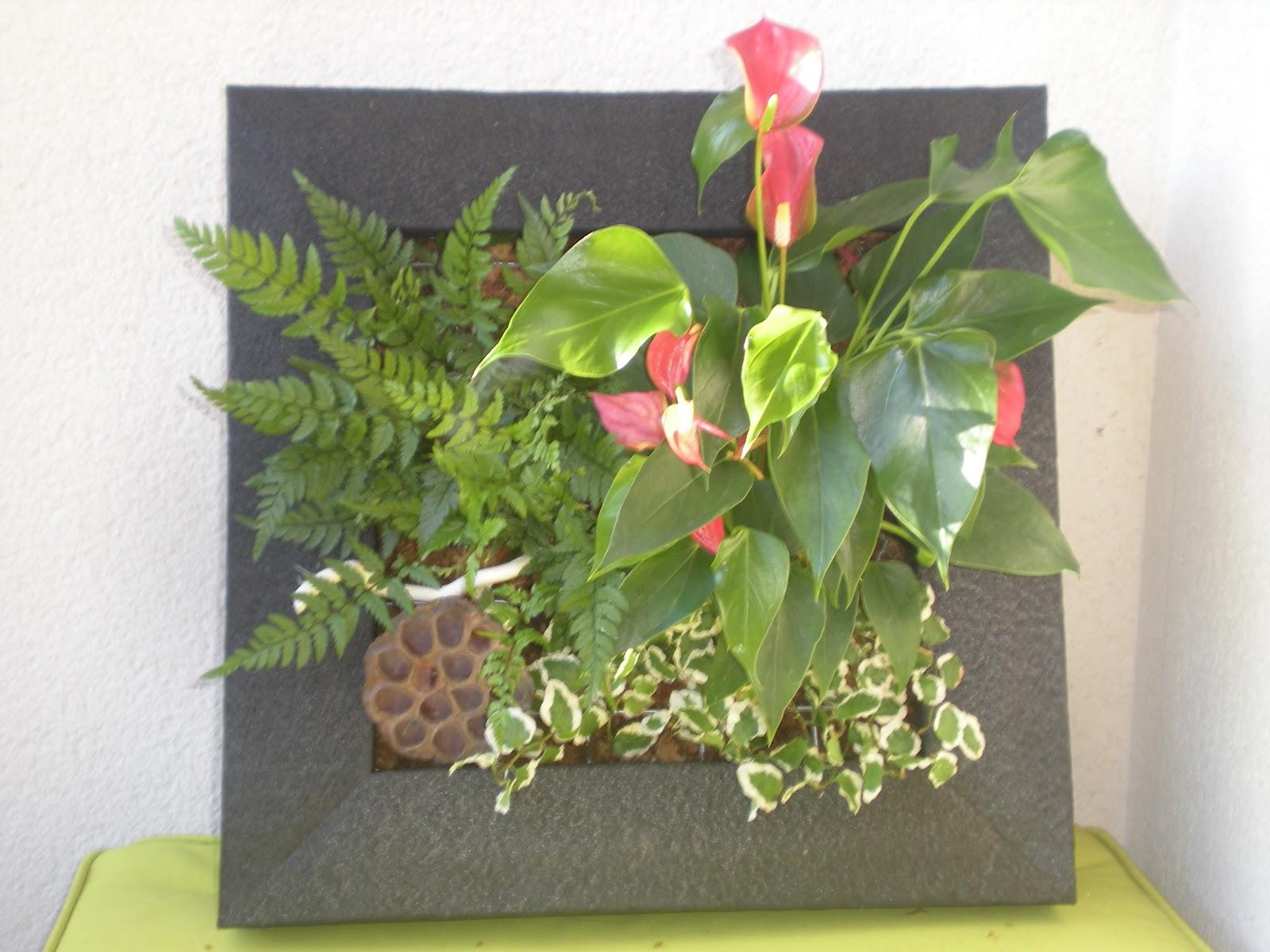Arrels jardines verticales arrels jardins i paisatges for Jardines verticales pequenos