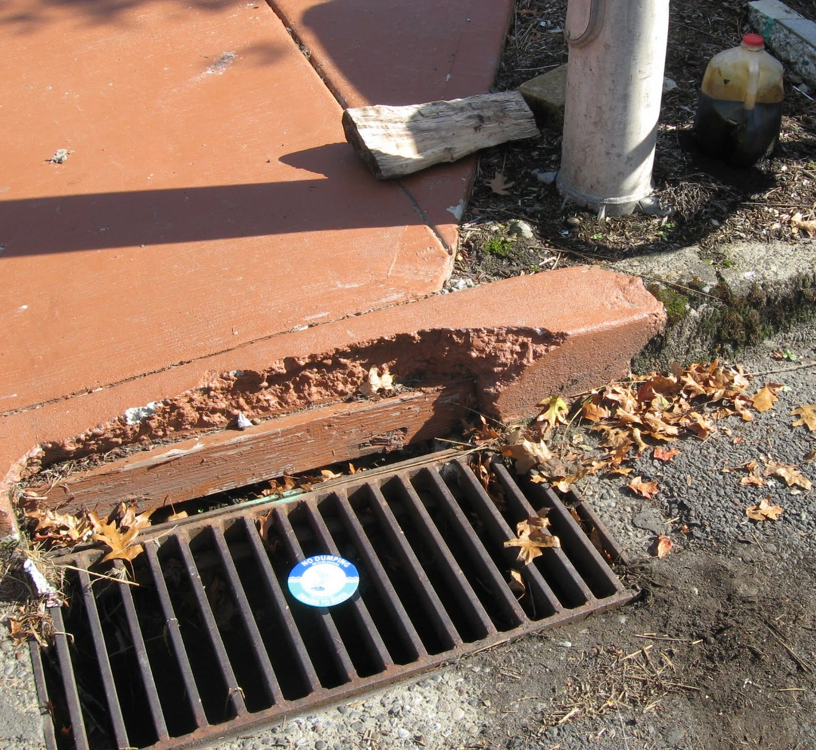 how to kill roots in drain