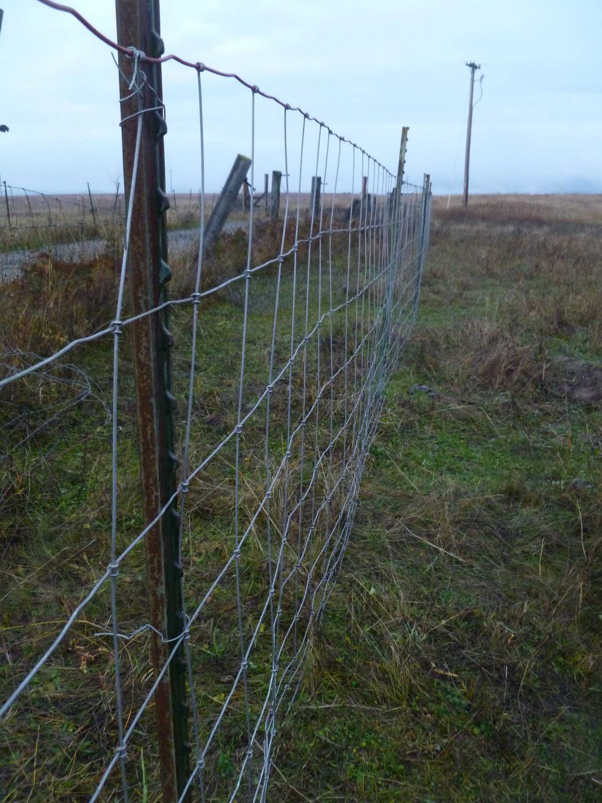 Rural Revolution: Fixing the #$%&*@ fences